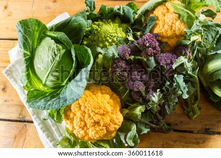 Cornucopia of vegetables from the brassicaceae family: yellow cauliflower, purple sprouting broccoli, cabbage, Romanesco cauliflower with its beautiful fractal shapes. #360011618