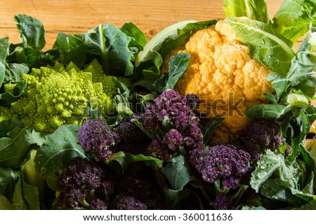 Cornucopia of vegetables from the brassicaceae family: yellow cauliflower, purple sprouting broccoli, cabbage leaves, Romanesco cauliflower with its beautiful fractal shapes. #360011636