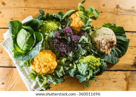 Cornucopia of vegetables from the brassicaceae family: yellow cauliflower, purple sprouting broccoli, cabbage, swede, Romanesco caulliflower with its beautiful fractal shapes. #360011696