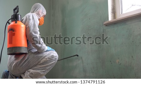 Coronavirus disinfectant spray. Mould and Mildew Remover, Killer and Cleaner Concentrate Spray. Removing black stains caused by mould and fungus Stockfoto ©