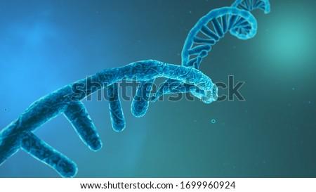 Coronavirus RNA strand. Medical illustration. 3D rendering Imagine de stoc ©
