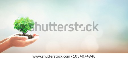 Corporate environmental responsibility concept: Human hands holding heart shape of big tree over blurred green nature background #1034074948