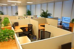 Corporate office settings showing desks, cubicles, files, and conference space
