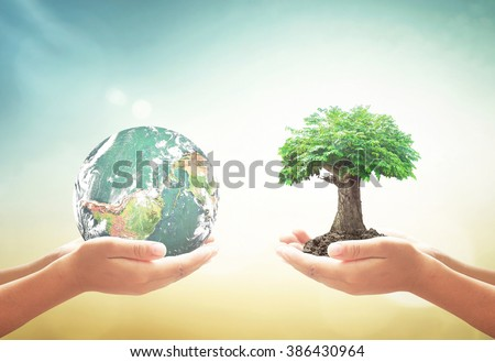 Corporate social responsibility (CSR) concept: Two human hands holding earth globe and green tree over blurred nature background. Elements of this image furnished by NASA.