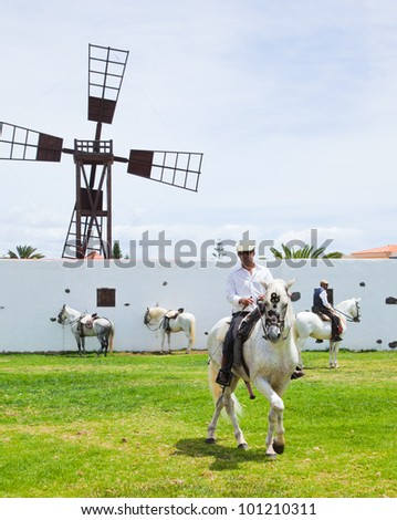 "CORRALEJO, SPAIN - APRIL 28: Horses are on show as a part of ""Feria de Abril"" celebration on 28 April 2012 in Corralejo, Fuerteventura, Spain"