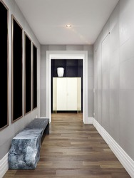 Corridors with doors and hall in modern flat