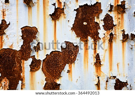 Corroded white metal background. Rusted white painted metal wall. Rusty metal background with streaks of rust. Rust stains. The metal surface rusted spots. Rysty\ncorrosion.