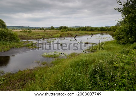 Cors Caron National Nature reserve, one of the largest raised peat bogs in the UK. Foto stock ©