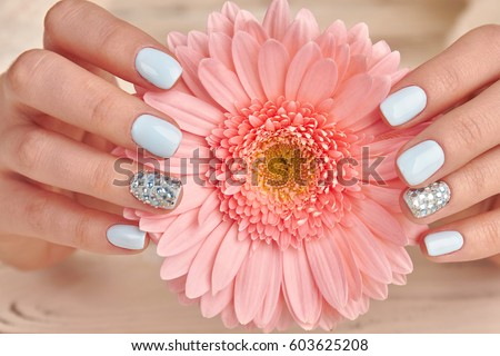 Cose-up of a delicate pink gerbera and blue manicure. Stylish fashion manicure with rhinestones.