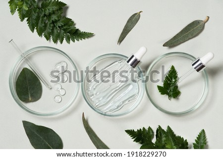 Cosmetic pipette and drop of cosmetic product on pastel green background with eucalyptus leaves. Natural cosmetics from herbal ingredients. Herbs and essential oils in cosmetics