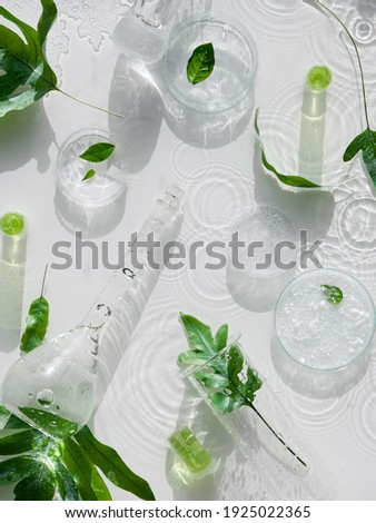 Cosmetic skincare background. Herbal medicine with green leaves. Natural sunlight, long shadows. Splashes of water, splashes. Chemical glassware, petri dishes, vials. Natural skincare background.