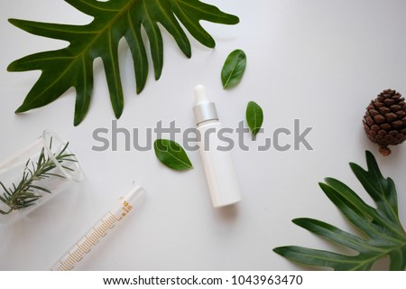 cosmetic skincare nature background flat lay. herbal medicine with herb and green leaves .beauty spa product,top view. #1043963470