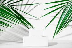 Cosmetics product advertising stand. Exhibition white podium with geometric shapes on a white background with palm leaves and shadows. Empty pedestal to display product packaging. Mockup