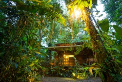Costa Rica, eco lodge in the rainforest at Puerto Viejo de Talamanca, luxury lodging