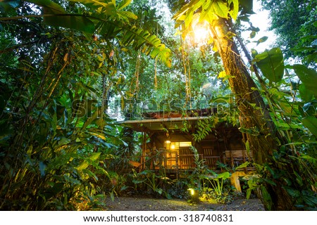 Costa Rica, eco lodge in the rainforest at Puerto Viejo de Talamanca, luxury lodging #318740831