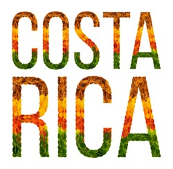 costa rica. word is written with leaves white isolated background, banner for printing, creative of color leaves costa rica