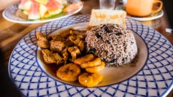 Costa Rican Food Plantain Tourism Gallo Pinto Rice & Beans Paradise Vacation Fine Dining Experience Costa Rican Food Ethnic Cuisine Rice and Beans Gallo Pinto Rice Plantain Beef Tropical Food