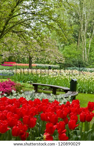Cosy bench among spring  flowers and blossom in dutch garden 'Keukenhof', Holland