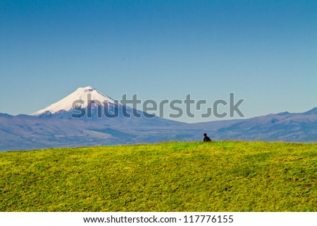 Cotopaxi volcano, Ecuador. - stock photo