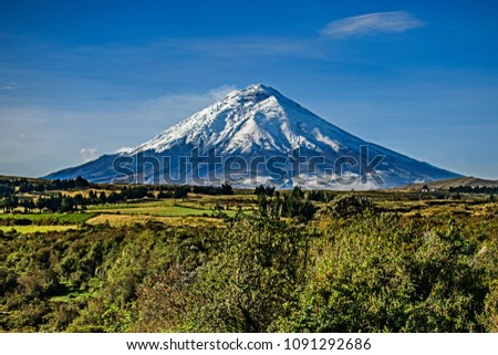 Cotopaxi volcano with sunset light shinning on it's slopes, and crops in the foreground, Ecuador.