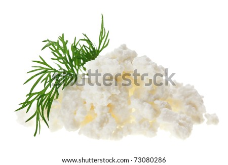 Cottage cheese (curd) heap with dill twig, isolated on white