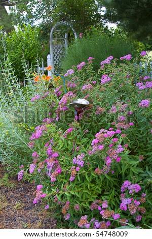 Cottage garden filled with flowers with trellis and picket fence in back