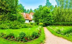 Cottage garden path in summer