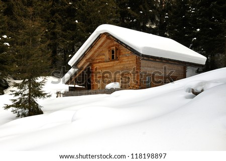 cottage on the forest edge, in the snow, in high Val Casies (Gsiesertal) in Alto Adige, Italy