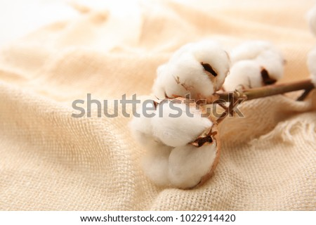 Cotton flowers on fabric, closeup #1022914420