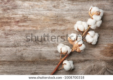 Cotton flowers on wooden background #1008700318