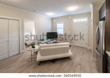 Couch, sofa in the nicely decorated family, living room in front of on couch small kitchen, couch furniture, couch writing, couch design,