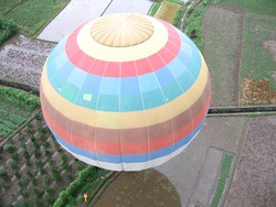 Coulourful Hot Air Balloon in rice fields