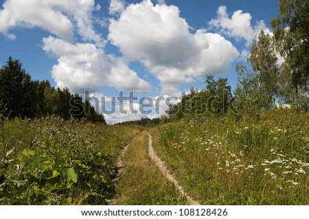Country dirt road in the forest, cloudy sky
