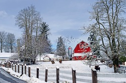 Country Farm in the Snow