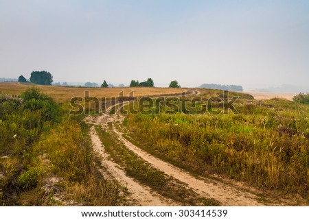 Country ground road in wheaten field. Summer landscape Rural scene.