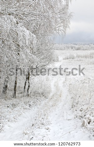 Country landscape after the first snowfall. Central Russia. Kaluga region.