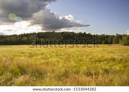 country landscape with cloudy sky in summer day. The sun's rays get into the pic forming a circle flare. Green and yellow hues in the field and blue and gray in the sky with rain clouds