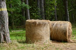 Country landscape with straw stack. High quality photo