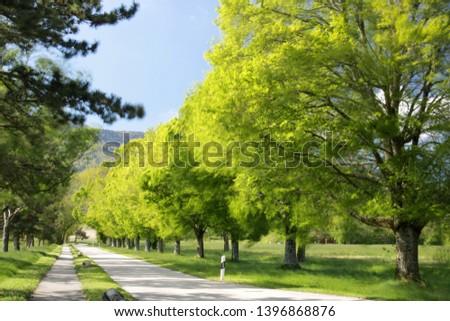 Country lane above Cheserex, Switzerland #1396868876
