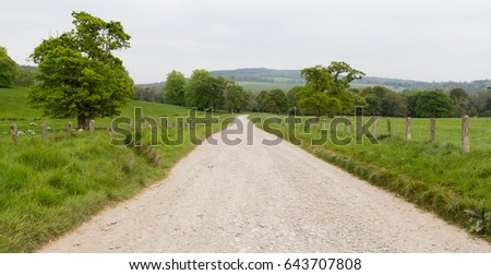 Country Lane Leading Through Green Meadow in Ireland
