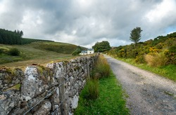 Country lane leading to Wistman's Wood at Two Bridges on Dartmoor National Park in Devon