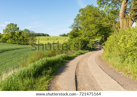 Country lane running through agricultural landscape with wheat and barley fields, trees and hedgerows in the Holsteinische Schweiz in Schleswig-Holstein, Germany.