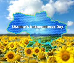 Country outline with text Ukraine's Independence Day and sunflower field under blue sky on background