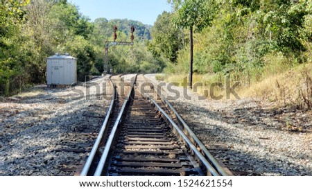 Country Railroad Train Tracks Splitting in Woods