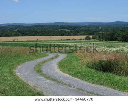 Country Road and Landscape