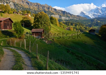 Country road between the old wooden barns at sunset in Swiss Alpine village Wengen.