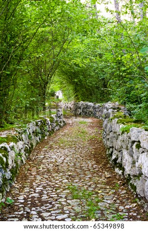 country road built with stones and plunged into the forest beside a mountain lake