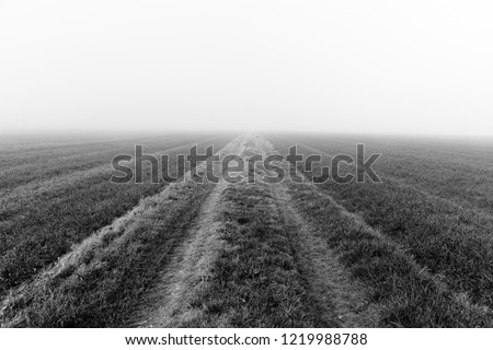 Country road endless in the fog #1219988788