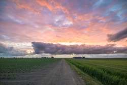 Country road in a field under a dramatic colorful sky at sunset