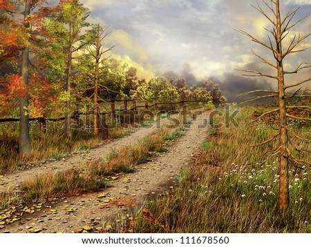 Country road in colorful autumnal forest